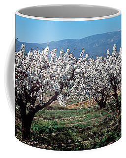 Cherry Trees In A Field With Mont Coffee Mug