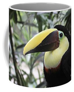 Coffee Mug featuring the photograph Chestnut-mandibled Toucan by Teresa Zieba