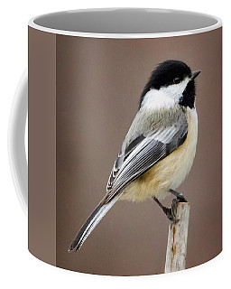 Chickadee Square Coffee Mug