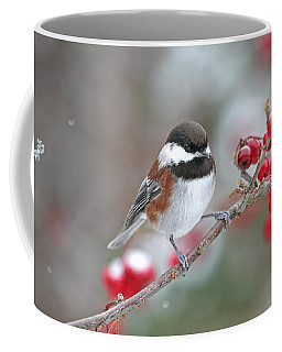 Chickadee With Red Berries In Falling Snow Coffee Mug by Peggy Collins