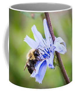 Chicory Bee Coffee Mug