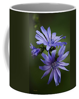 Chicory Flowers Coffee Mug