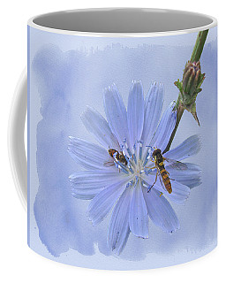 Chicory Wildflower - Cichorium Intybus Coffee Mug