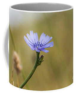 Chikory Cornflower Coffee Mug