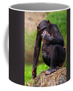 Coffee Mug featuring the photograph Chimp With A Baby On Her Belly  by Nick  Biemans