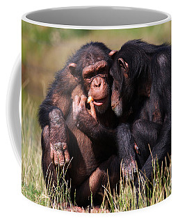 Coffee Mug featuring the photograph Chimpanzees Eating A Carrot by Nick  Biemans