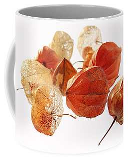 Chinese Lanterns Coffee Mug