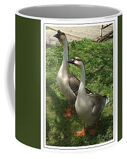 Chinese Swan Goose Pair 2 Coffee Mug
