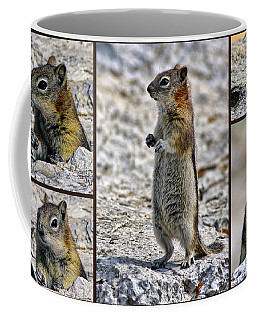 Chipmunk Collage Coffee Mug by Lynn Bolt