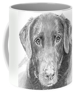 Chocolate Lab Sketched In Charcoal Coffee Mug by Kate Sumners