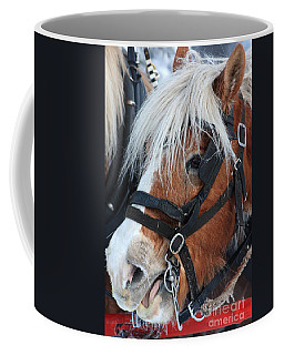 Coffee Mug featuring the photograph Chomping On The Bit by Alyce Taylor