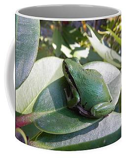 Chorus Frog On A Rhodo Coffee Mug by Cheryl Hoyle