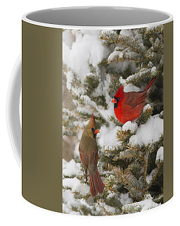 Christmas Card With Cardinals Coffee Mug