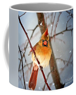 Northern Cardinal Snow Scene Coffee Mug