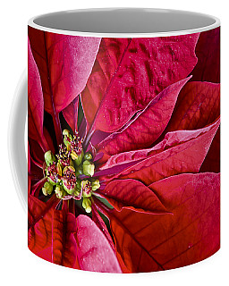 Christmas Petals Coffee Mug