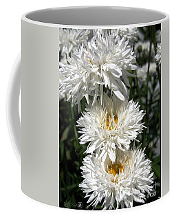 Coffee Mug featuring the photograph Chrysanthemum Named Crazy Daisy by J McCombie