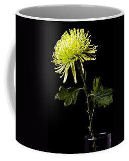 Coffee Mug featuring the photograph Chrysanthemum by Sennie Pierson