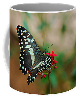 Coffee Mug featuring the photograph Citrus Butterfly by Tam Ryan