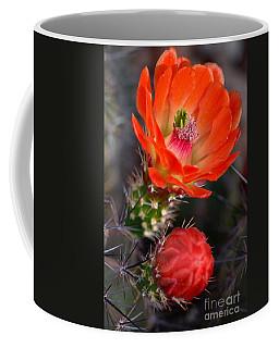 Claret Cup Cactus Coffee Mug by Deb Halloran