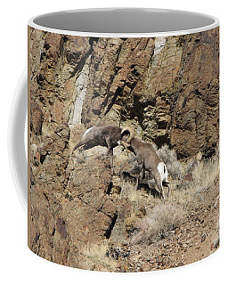 Clash Of The Titans Coffee Mug