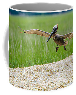 Coffee Mug featuring the photograph Clear For Landing by Steven Santamour