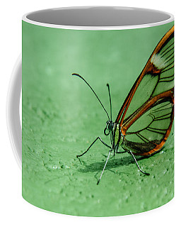 Coffee Mug featuring the photograph Clear Wing by Tam Ryan