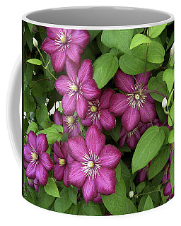 Coffee Mug featuring the photograph Clematis by Penny Lisowski