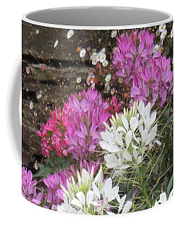 Coffee Mug featuring the photograph Cleome - Spider Flower by Jayne Wilson