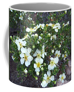 Coffee Mug featuring the photograph Cliff Rose by Charles Robinson