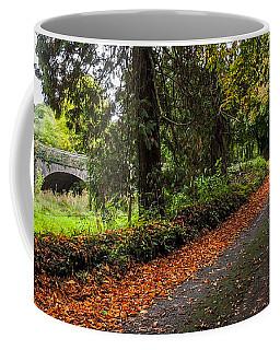 Clondegad Country Road Coffee Mug