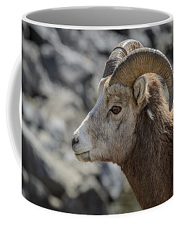 Close Big Horn Sheep  Coffee Mug
