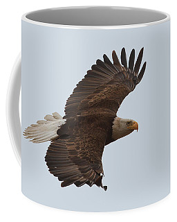 Coffee Mug featuring the photograph Close Encounter Of The Best Kind by Beth Sargent