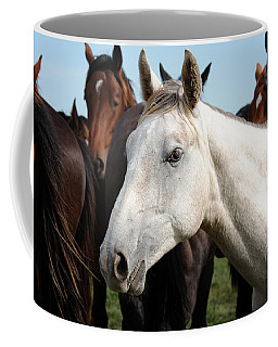 Close-up Herd Of Horses. Coffee Mug