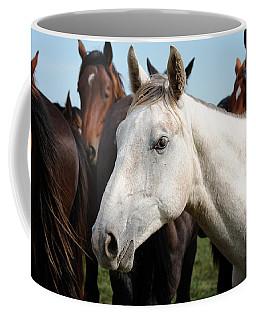 Close-up Herd Of Horses. Coffee Mug