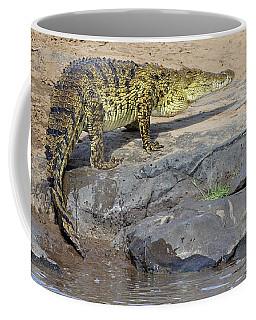 Close-up Of A Nile Crocodile Crocodylus Coffee Mug