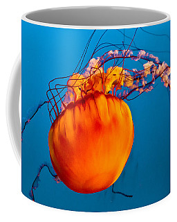 Coffee Mug featuring the photograph Close Up Of A Sea Nettle Jellyfis by Eti Reid