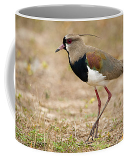 Close-up Of A Southern Lapwing Vanellus Coffee Mug