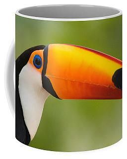 Close-up Of A Toco Toucan Ramphastos Coffee Mug