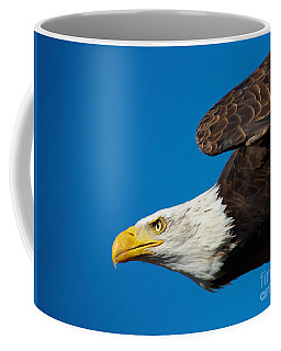 Coffee Mug featuring the photograph Close-up Of An American Bald Eagle In Flight by Nick  Biemans
