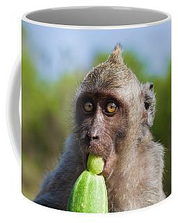 Closeup Monkey Eating Cucumber Coffee Mug