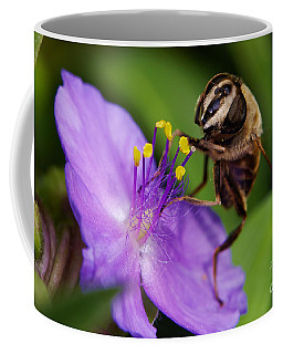 Coffee Mug featuring the photograph Closeup Of A Bee On A Purple Flower by Nick  Biemans