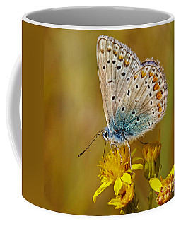 Coffee Mug featuring the photograph Closeup Of A Common Blue Butterfly by Nick  Biemans