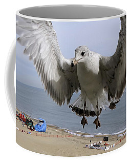 Closeup Of Hovering Seagull Coffee Mug by Richard Rosenshein
