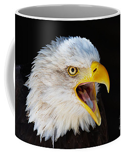 Coffee Mug featuring the photograph Closeup Portrait Of A Screaming American Bald Eagle by Nick  Biemans