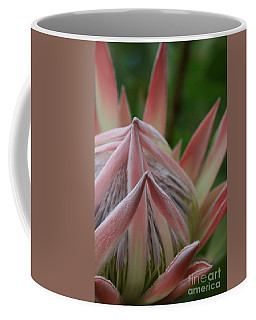 Cloths Of Heaven  Coffee Mug
