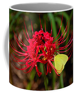 Cloudless Sulphur Coffee Mug