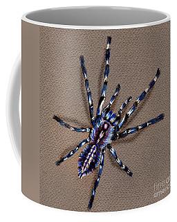Cobalt Blue Tarantula Coffee Mug