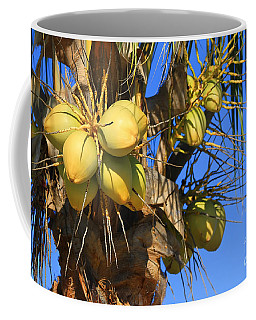 Coffee Mug featuring the photograph Coconut 2 by Teresa Zieba