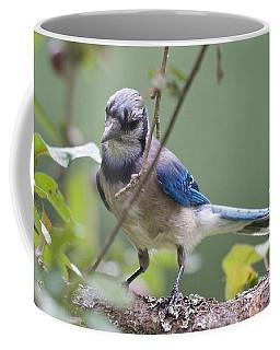 Cogitating Wildly Coffee Mug