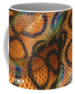 Coils Of A Brazilian Rainbow Boa Coffee Mug